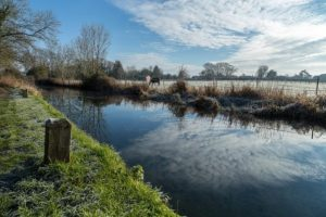 basingstoke_canal